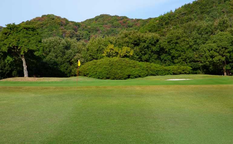 ゴルフ場 コース